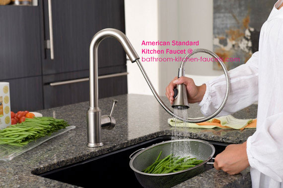 Pekoe Pull Down Kitchen Faucet From American Standard Best Kitchen