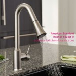 Pekoe Pull-Down Kitchen Faucet from American Standard