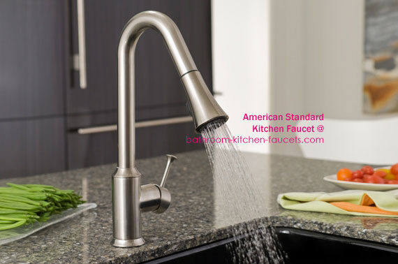 Pekoe Pull-Out Spray Kitchen Faucet photo
