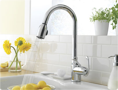 Lifestyle Of Danze Kitchen Faucets And Bath Fixtures Bathroom Fixtures