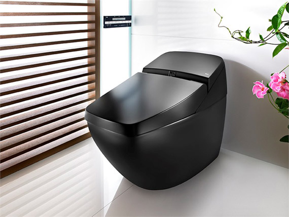 roca lumen avant toilet with bidet function bathroom fixtures. Black Bedroom Furniture Sets. Home Design Ideas