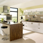 Contemporary Kitchen Remodeling Pictures and Design Ideas